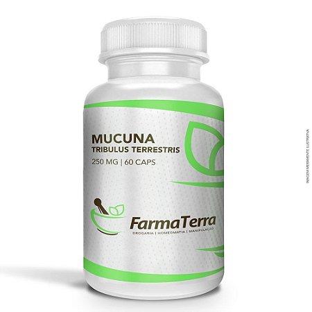 Mucuna / Tribulus Terrestris - 60 Caps