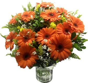 Bouquet de gerberas laranjas