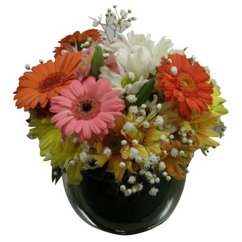 Aquário de flores do campo
