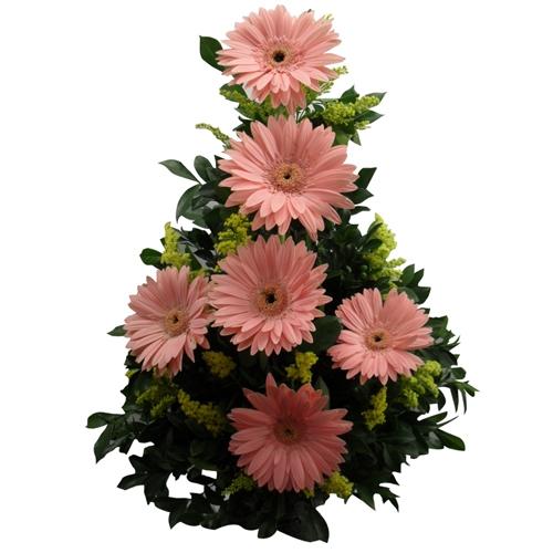 Ikebana gerberas rosa bebê