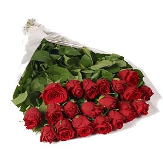 Bouquet 20 rosas vermelhas sem folhagem