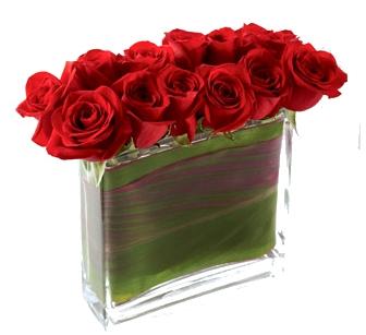 Retângulo de rosas vermelhas