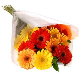 Bouquet de gerberas espalmado