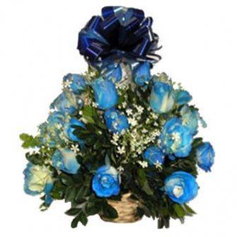 Colombianas de Rosas Azuis