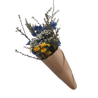 Cone Especial