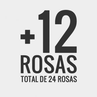 +12 rosas, total de 24 rosas