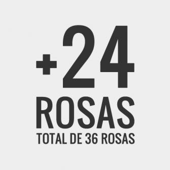 +24 rosas, total de 36 rosas