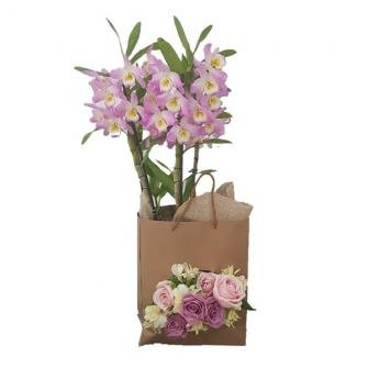 Bag Decorada de Orquideas