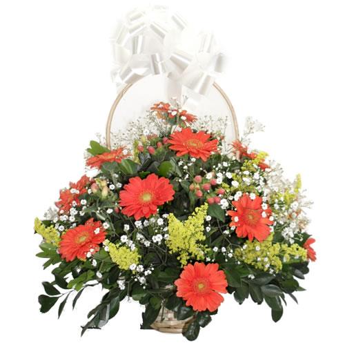 Cestinha de rosas laranjas