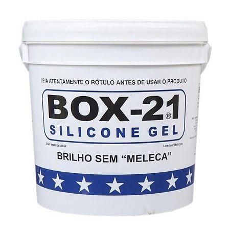 Silicone Gel 10Kg - Box 21