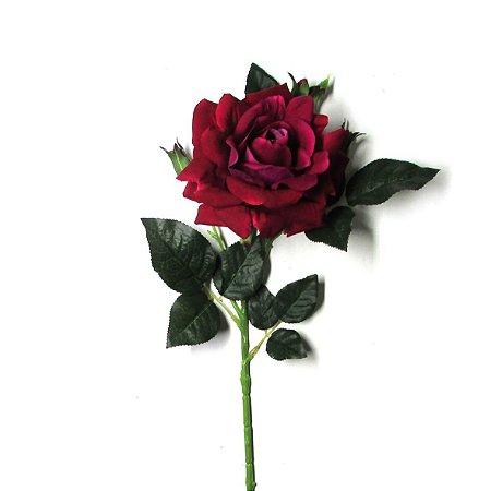 Rosa cor Vinho Muda com 40 cm Já Floresce
