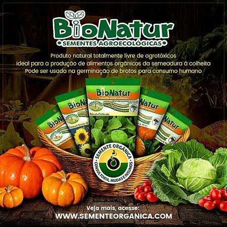 Kit 20 pacotes de sementes Orgânicas á escolher com Frete Grátis