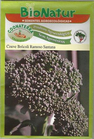 Semente Orgânica de Couve Brócoli Ramoso Santana 1 gr