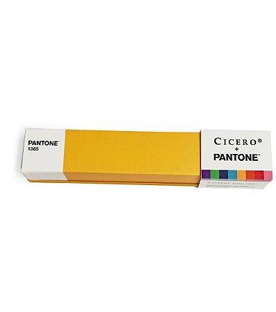 Estojo Cubico Cicero e Pantone Amarelo