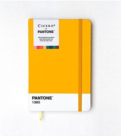 Caderneta Ciceros Cicero e Pantone Sem Pauta 14×21 Amarelo