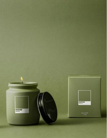 Vela Pote Green Fig Pantone