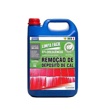 LIMPA FÁCIL EFLORESCÊNCIA REMOÇÃO DE DEPOSITO DE CAL 5 LITROS - PERFORMANCE ECO10