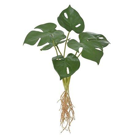 Buquê Costela de Adão com Raiz (6 Folhas) - 43cm
