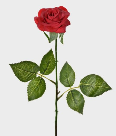 Haste Rosa Real Toque 44cm - Vermelho