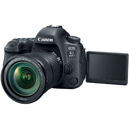 Canon EOS 6D Mark II + Lente EF 24-105mm f/3.5-5.6 IS STM