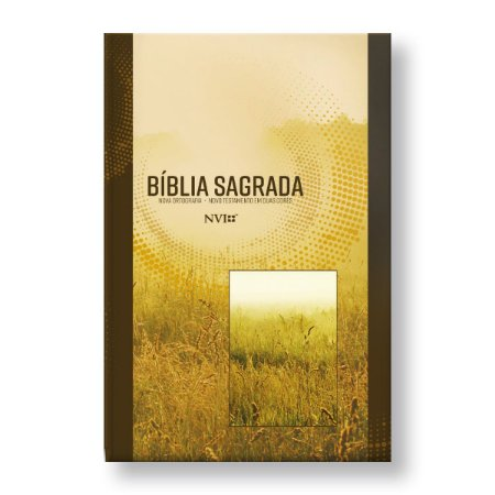 BÍBLIA NVI GRANDE CAPA BROCHURA NEUTRA
