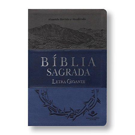 BÍBLIA RA065LGI LETRA GIGANTE CINZA/AZUL/AZUL ESCURO COM ÍNDICE