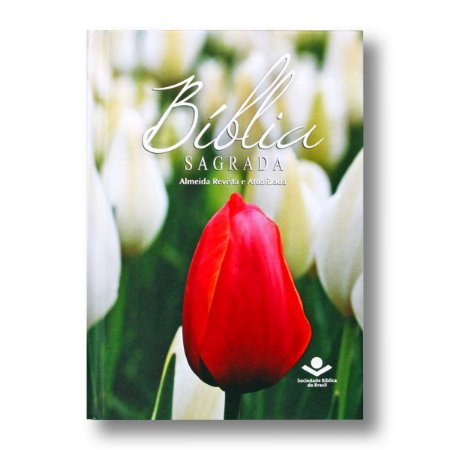 BÍBLIA RA43M:FEM:BIB MISSIONÁRIA CAPA DURA FEMININA