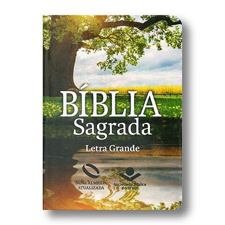 BÍBLIA NA041TILGL REFLEXO LETRA GRANDE SEMI FLEXÍVEL COM ÍNDICE