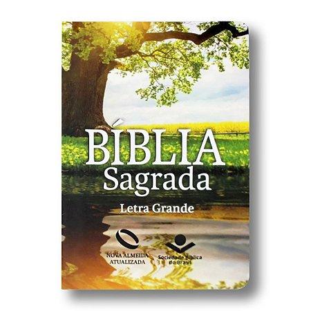 BÍBLIA NA041LG LETRA GRANDE CAPA SEMIFLEXÍVEL REFLEXO