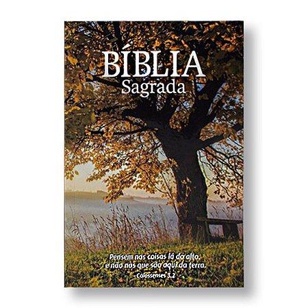 BÍBLIA NA60 BROCHURA ECONÔMICA OUTONO