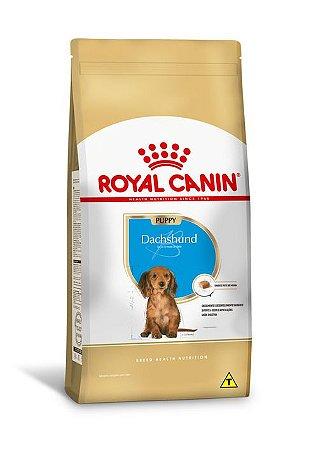Ração Royal Canin Dachshund Filhotes - 2,5kg