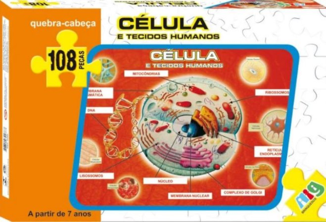 Quebra-cabeça Células E Tecidos Humanos