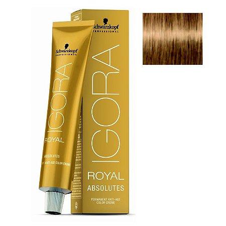 Coloração Igora Royal Absolutes 8-50 Louro Claro Dourado Natural 60ml Schwarzkopf