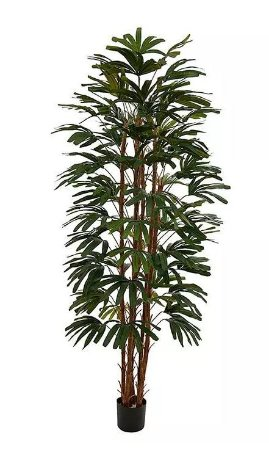 Planta Árvore Artificial Palmeira Raphis Verde 2,1m
