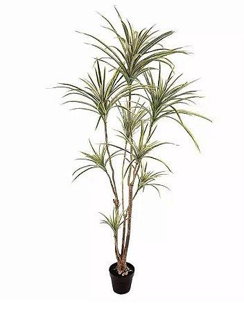 Planta Árvore Artificial Dracena Verde em 2 Tons 1,95m