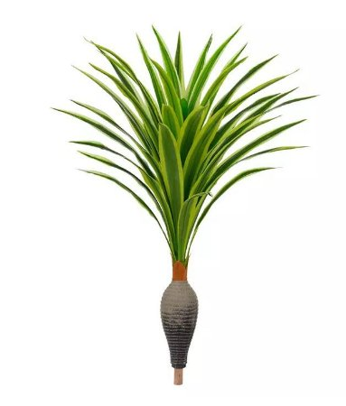 Planta Árvore Dracena Garrafa Real Toque Verde Creme 1,2m