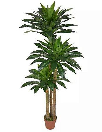 Planta Árvore Artificial Dracena Real Toque Verde 1,8m