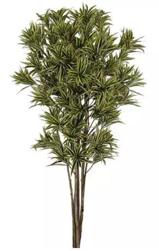 Planta Árvore Artificial Dracena Reflexa Amarelo Verde 1,7m