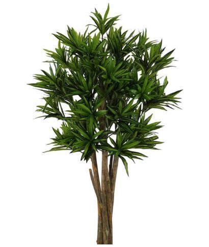 Planta Artificial Árvore Dracena Reflexa Verde 1,2m