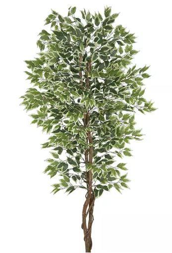 Planta Árvore Artificial Ficus Verde Creme 2,1m
