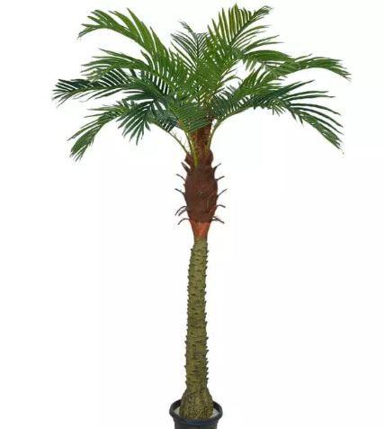 Planta Artificial Árvore Palmeira Phoenix Verde 1,8m