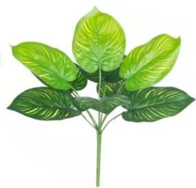 Folhagem Artificial Calathea Verde Creme 42cm