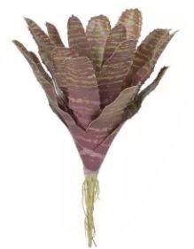 Folhagem Artificial Bromélia Marrom Verde 26cm