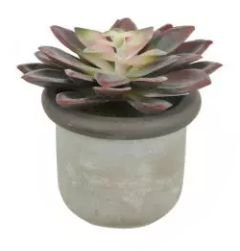 Arranjo Suculenta Artificial Echeveria Beauty 9cm