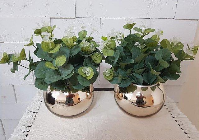 Kit com dois arranjos de folhagens de eucalipto em Vasos de Vidro tipo Aquário