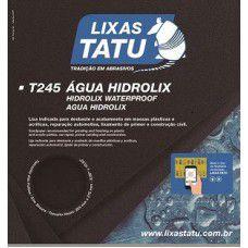 LIXA DAGUA 180 - T245 - TATU