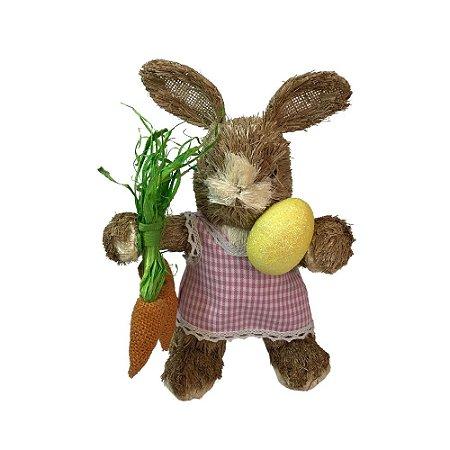 Coelha  Rústica com Cenouras