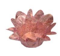Forminha Lirio Rose Gold