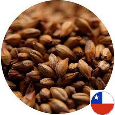 Malte Caramel 140L / 340EBC Patagonia - 1kg