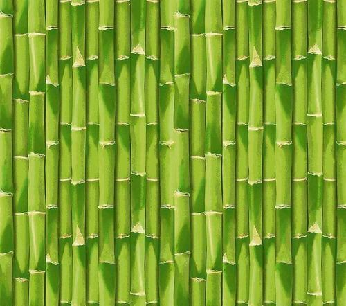 TNT Estampado Bambu - 1 metro